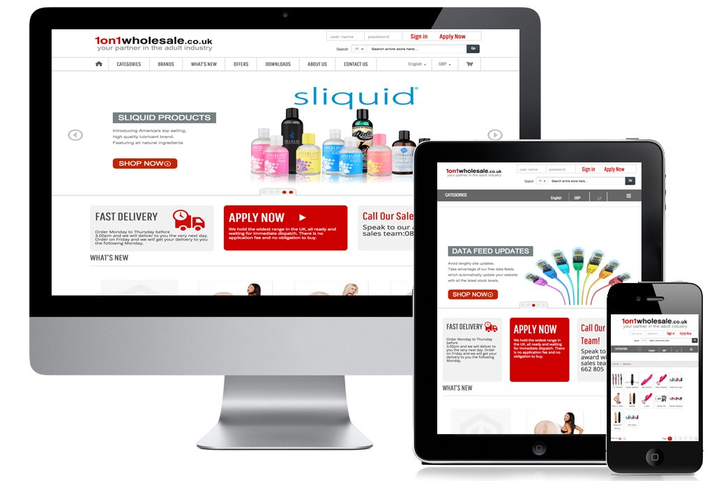 Net 1on1 Wholesale New Website Launches